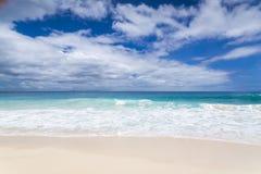 白色珊瑚海滩沙子和天蓝色印度洋。 免版税库存图片