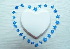 白色瓷心脏和蓝色花被计划以在白色背景的心脏的形式 r 库存照片