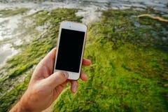 白色电话智能手机在一个人的手上有一个空的黑屏幕的在海岸线处于低潮中和绿色Al的背景 免版税库存照片