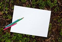 白色白纸叶子和色的铅笔在地面上在绿色植物中 免版税图库摄影