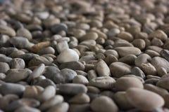 白色石温暖的口气 库存图片