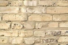 白色砖背景纹理  免版税库存照片