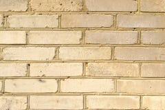 白色砖背景纹理  免版税库存图片