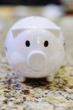 白色硬币箱猪银行 库存图片