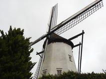 白色磨房-圣Niklaas -比利时 库存图片
