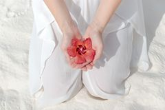 白色礼服的下跪的妇女在她的手上的拿着一朵热带花 免版税库存照片