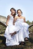 白色礼服的两个新娘在吊床摆在晴朗的s的森林里 库存照片