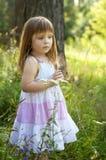 白色礼服的可爱的小女孩在森林森林若虫 晴朗的日 免版税库存照片