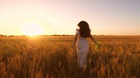 白色礼服的愉快的女孩有运行通过一个领域的长的开发的头发的用金黄麦子在日落 慢的行动 影视素材