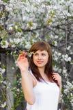 白色礼服的深色的女孩在樱花的春天 库存照片