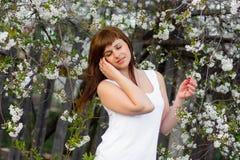 白色礼服的深色的女孩在樱花的春天 库存图片