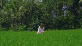 白色礼服的美丽的少女在巴厘岛印度尼西亚的米领域 股票视频