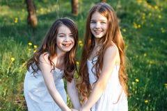 白色礼服的美丽的少女在有blosoming在日落的苹果树的庭院里 拥抱二的朋友 库存照片