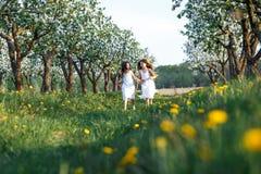 白色礼服的美丽的少女在有blosoming在日落的苹果树的庭院里 拥抱二的朋友 库存图片