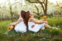 白色礼服的美丽的年轻逗人喜爱的女孩在有blosoming在日落的苹果树的庭院里 拥抱二的朋友 免版税库存照片