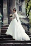 白色礼服的美丽的性感的深色的新娘走台阶的, 免版税库存照片