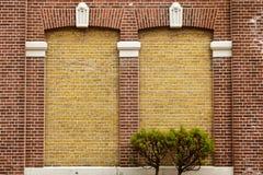 白色窗口绿色墙壁上升的植物草盖子墙壁背景窗口离开葡萄酒 库存照片