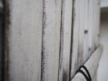 白色竹墙壁侧视图 竹背景 免版税图库摄影