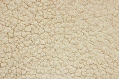 白色羊毛纹理 库存图片