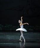 白色翼芭蕾天鹅湖 免版税库存图片