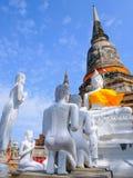 白色老菩萨雕象有在Wat亚伊柴Mongkhon古庙的蓝天背景 免版税库存照片