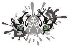 白色老虎眼睛飞溅 免版税图库摄影