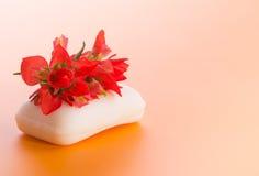 白色肥皂有一朵明亮的红色印度画笔花的 库存图片