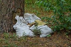 白色肮脏的袋子在一棵树附近的垃圾在草在森林里 免版税图库摄影