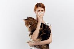 白色背景的年轻美丽的妇女拿着一只猫,对宠物的过敏 免版税库存照片