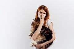 白色背景的年轻美丽的妇女拿着一只猫,对宠物的过敏 库存图片