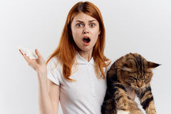 白色背景的年轻美丽的妇女拿着一只猫,情感,过敏 图库摄影