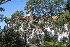 白色膏药教会通过巨型的橡树 图库摄影