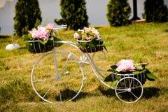 白色自行车 免版税库存图片