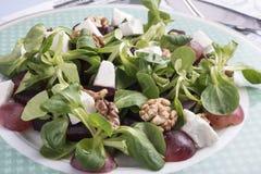 白色色拉盘用菠菜、奎奴亚藜、核桃和葡萄 免版税库存图片