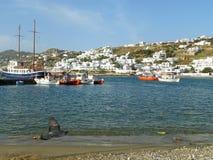 白色色的议院和蓝色海惊人的看法米科诺斯岛旧港口的有飞行鸽子的 免版税库存图片