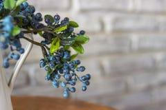 白色花瓶和蓝莓 蓝莓,沼泽越橘,伟大的越桔灌木  免版税库存照片