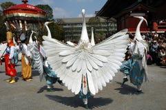 白色苍鹭舞蹈 免版税库存图片