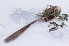 白色茶叶子在一把匙子的在白色背景 在一把古色古香的匙子的茶 图库摄影
