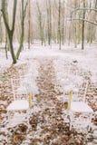 白色葡萄酒婚礼椅子在秋天森林里 库存图片