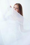 白色薄纱 库存图片