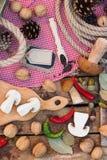 白色蘑菇、胡椒和香料片断  图库摄影