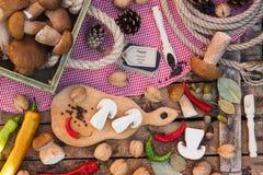 白色蘑菇、胡椒和香料片断  库存图片