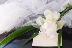 白色虹膜花束有面纱的在黑暗的光滑的背景 免版税库存图片