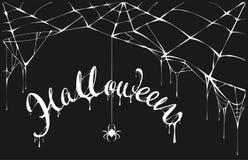 白色蜘蛛和白色spiderweb在黑背景 万圣夜贺卡的字法文本 向量例证