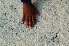 白色被晒黑的米和手 库存照片