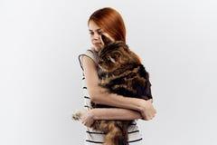 白色被隔绝的背景的美丽的少妇拿着一只猫,过敏 免版税库存照片
