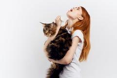 白色被隔绝的背景的美丽的少妇拿着一只猫,过敏 图库摄影