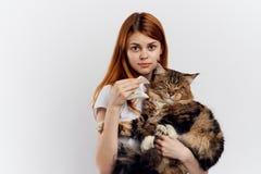 白色被隔绝的背景的美丽的少妇拿着一只猫 库存照片