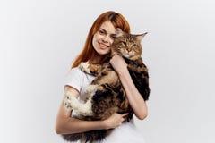 白色被隔绝的背景的美丽的少妇拿着一只猫 免版税库存照片