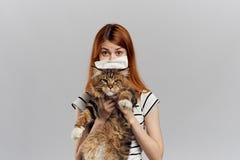 白色被隔绝的背景的美丽的少妇拿着一只猫 库存图片